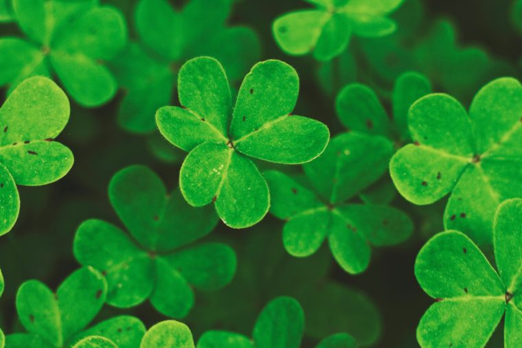 Four Things About Saint Patrick You Probably Didn't Know